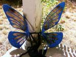 Sapphire Butterfly Basic Wings
