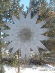 16 Pointed Window Star - $19