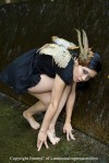 Feather Fairy Wings - $125
